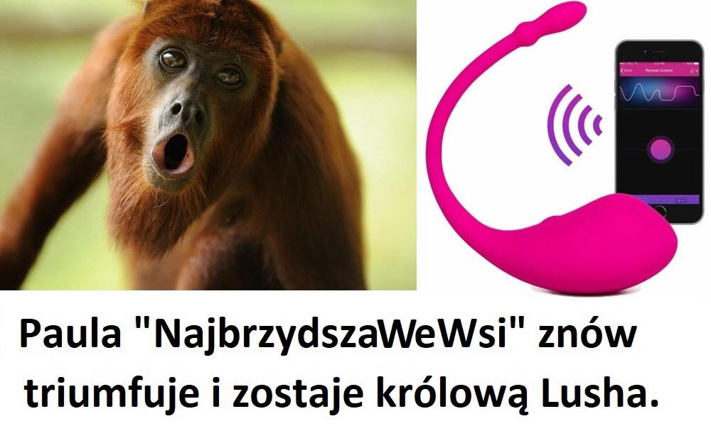 Rozwiązanie konkursu na największego wyjca i padaczkę Lovense Lush na ShowUp.tv
